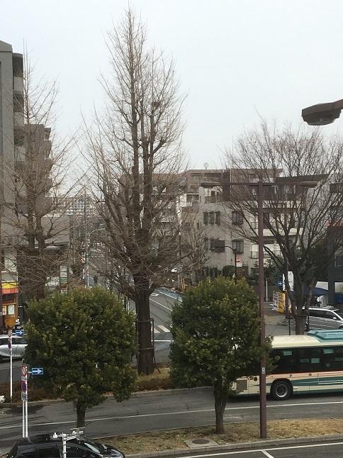 daihachiguruma29.jpg