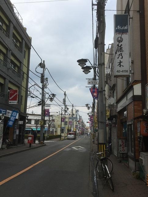 fujinoki25.jpg