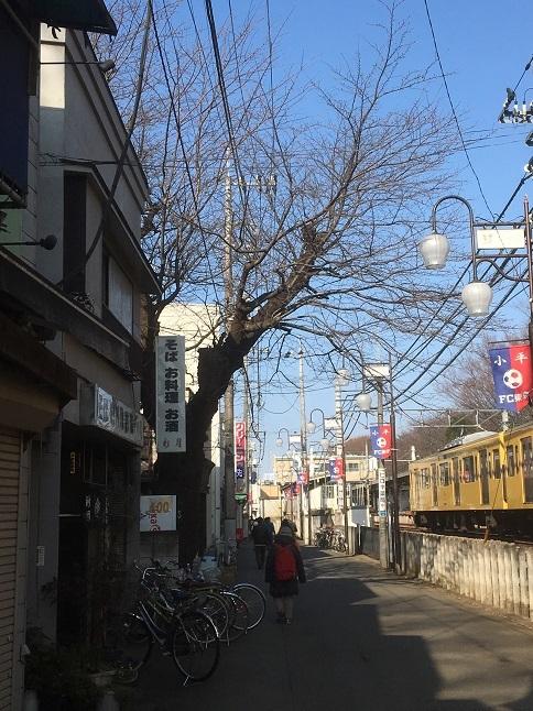 shingetsu12.jpg