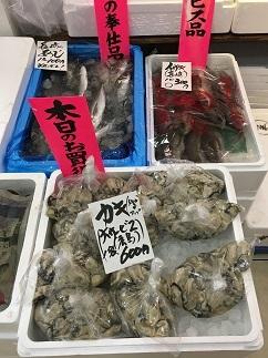 tokutokuichiba180217-20.jpg