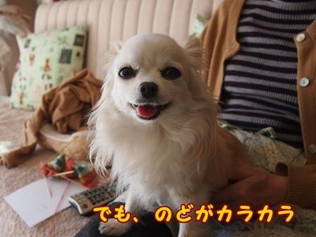 bloga543a.jpg