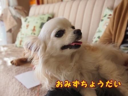 bloga546a.jpg