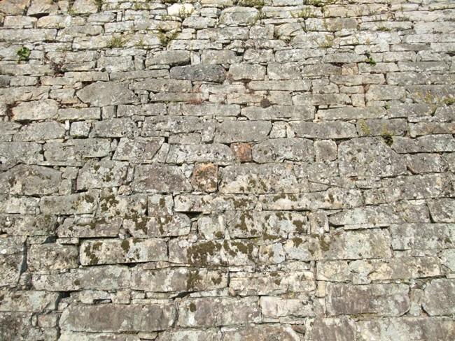 対馬の石垣2