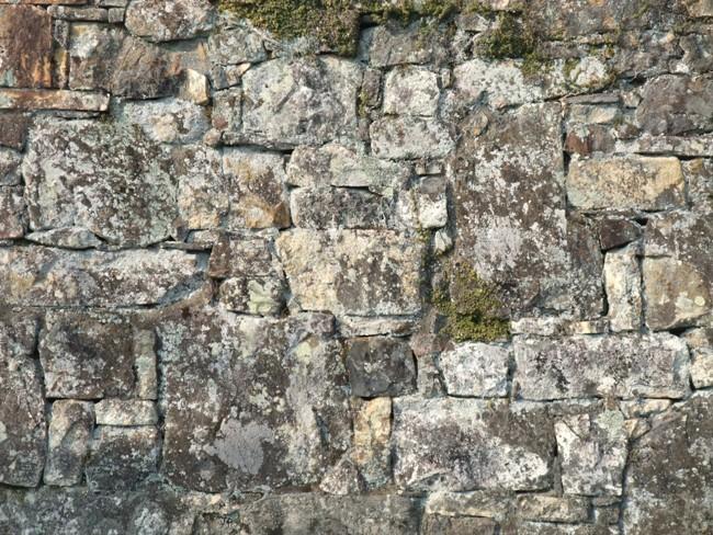 対馬の石垣3