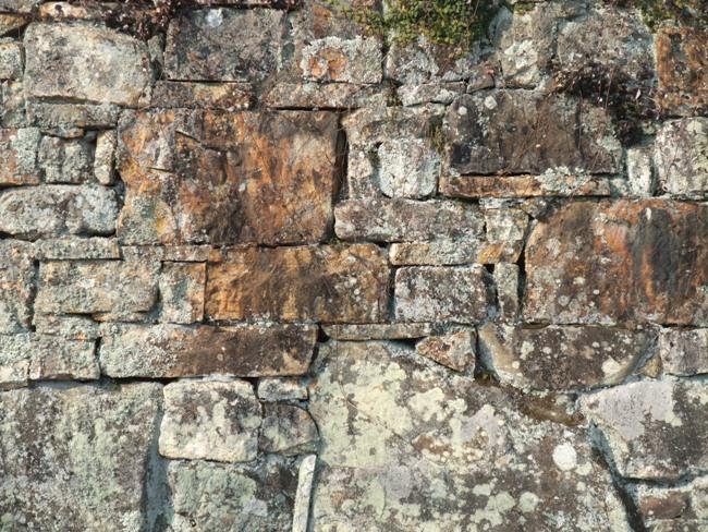 対馬の石垣8