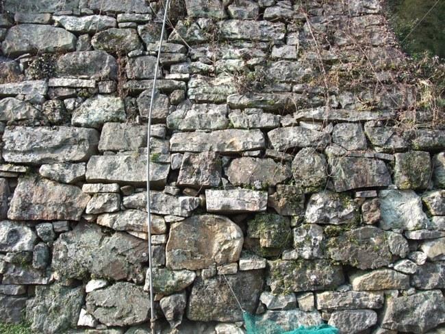対馬の石垣9