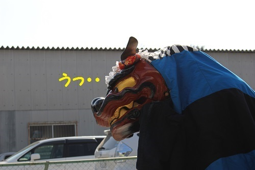 IMG_7747.jpg