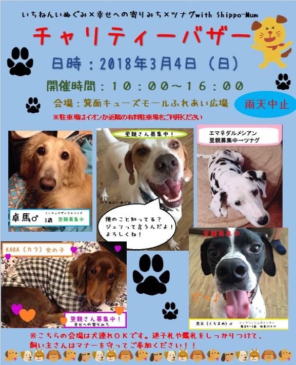 fc2blog_20180217204928f9a.jpg