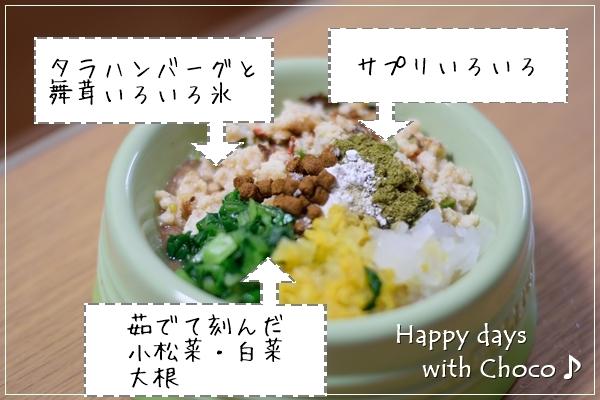 DSC_8675-001.jpg
