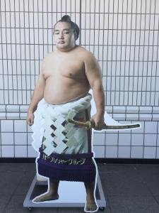 IMG_2661 朝赤龍引退 錦島襲名 披露大相撲