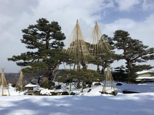 180218金沢旅行兼六園