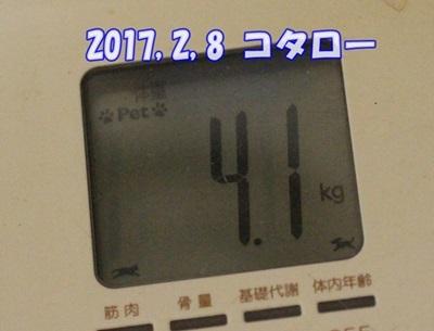 2018 02 08_9930-1