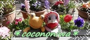 ココノニワ