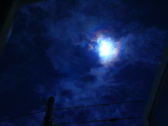 月傘4・7