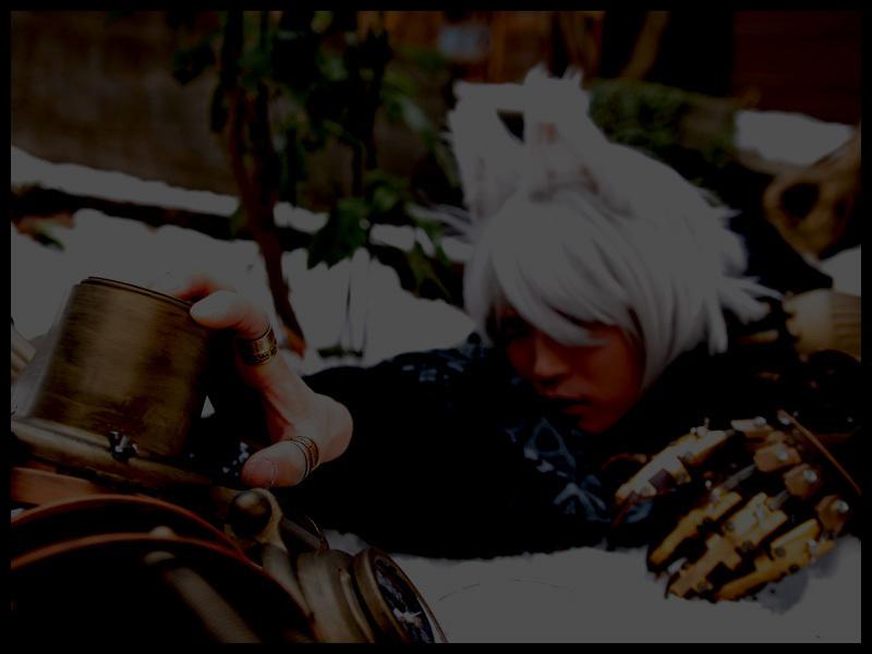 02雪柳_死