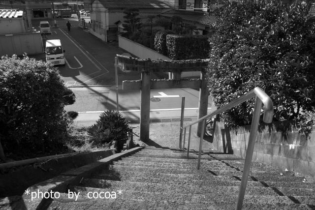 DSC06115 2017-01-11 15-02-47