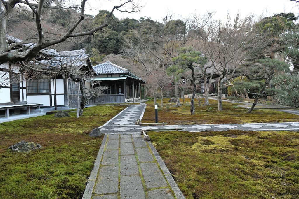 長寿寺 境内
