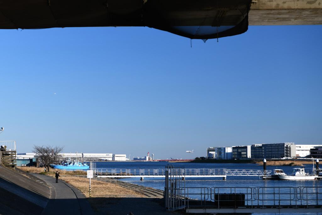 首都高大師橋下から望む多摩川河口