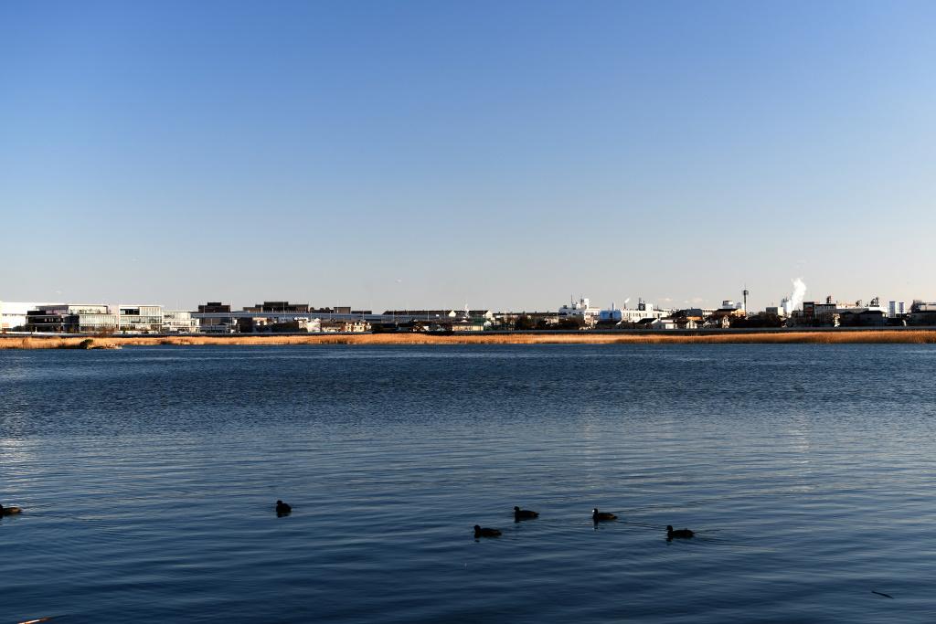 川崎扇島の工場