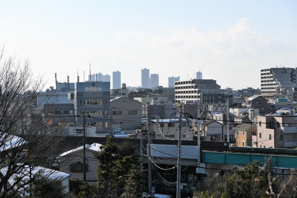 遠景 武蔵小杉 超高層ビル群