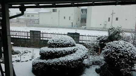 雪景色20180122 (1)