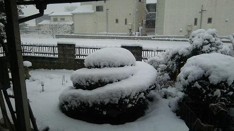 雪景色20180122 (2)