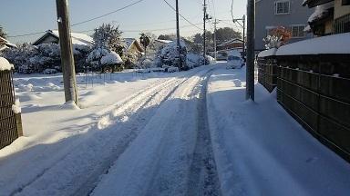 雪景色20180123 (2)