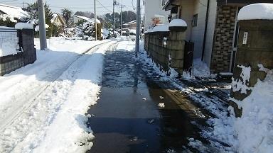 雪景色20180123 (3)