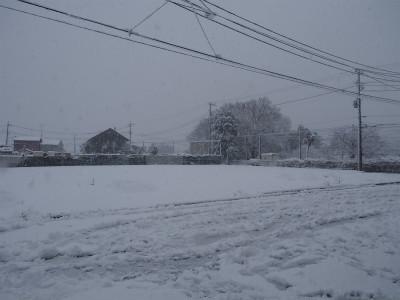 shukuP1220007.jpg