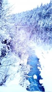 201802_新年会_白ひげの滝_002