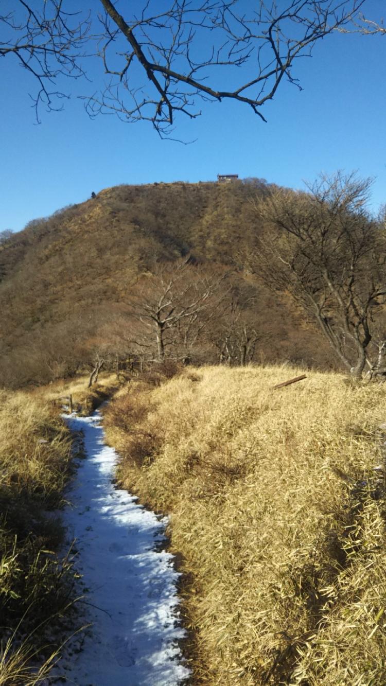 2017丹沢冬04
