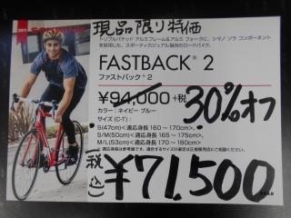 sw_fastback2-03.jpg