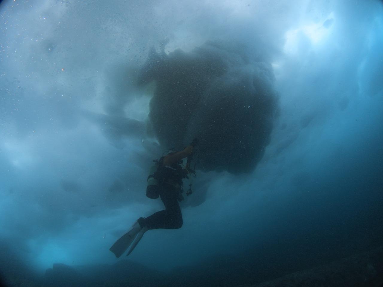 111日本最北の地ダイビング (3)