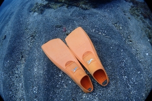 熱海ダイビング冬季限定ポイント洞窟 (3)