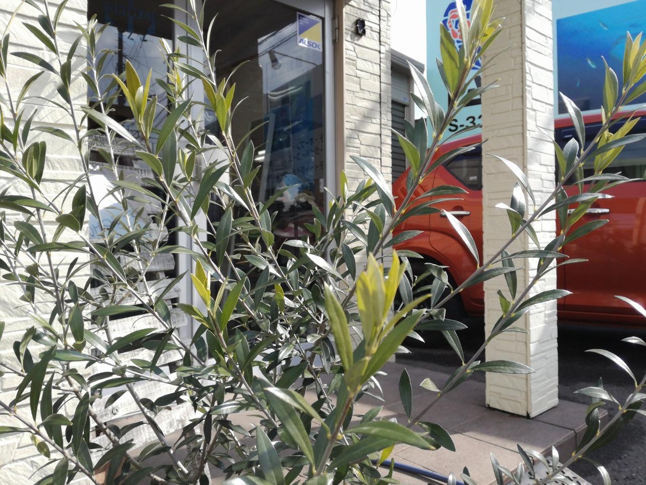 木下街道趣味 (2)