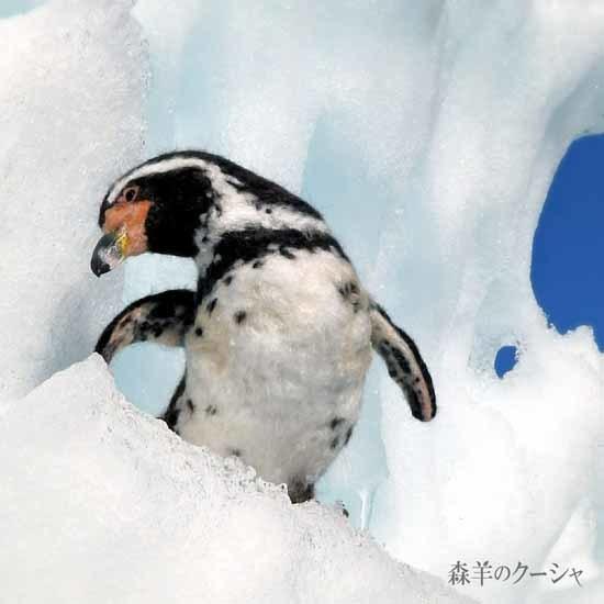 フンボルトペンギン-1