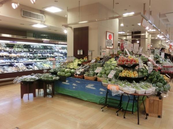 地階ガーデン野菜