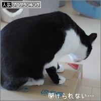 dai20180110_banner.jpg