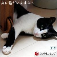 dai20180115_banner.jpg