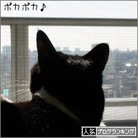 dai20180116_banner.jpg