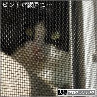 dai20180118_banner.jpg