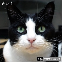 dai20180119_banner.jpg