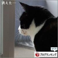 dai20180122_banner.jpg