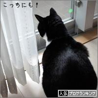 dai20180123_banner.jpg