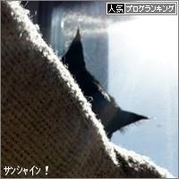 dai20180125_banner.jpg