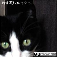 dai20180126_banner.jpg