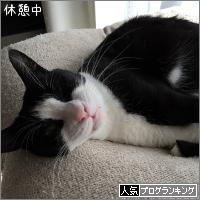 dai20180201_banner.jpg