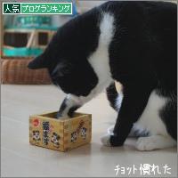 dai20180205_banner.jpg