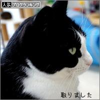 dai20180208_banner.jpg
