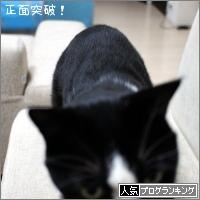 dai20180209_banner.jpg